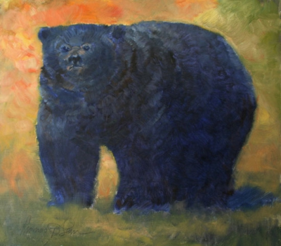 Black Bear revisited
