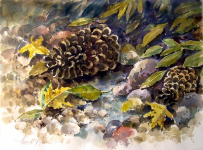 Pinecones, needles and leaves