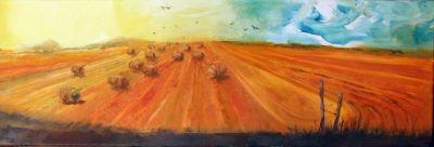 Harvest fields